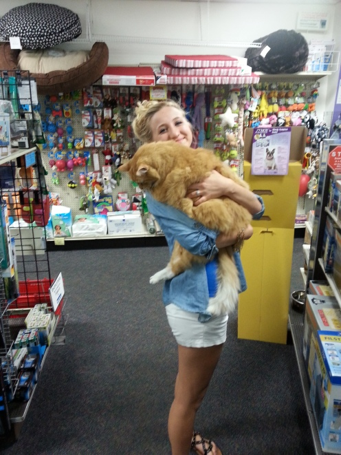 As soon as I held this HUGE cat, my eyes itched for the rest of the day. He was easily 25 ibs.