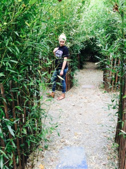 #Appleworks Bamboo maze.